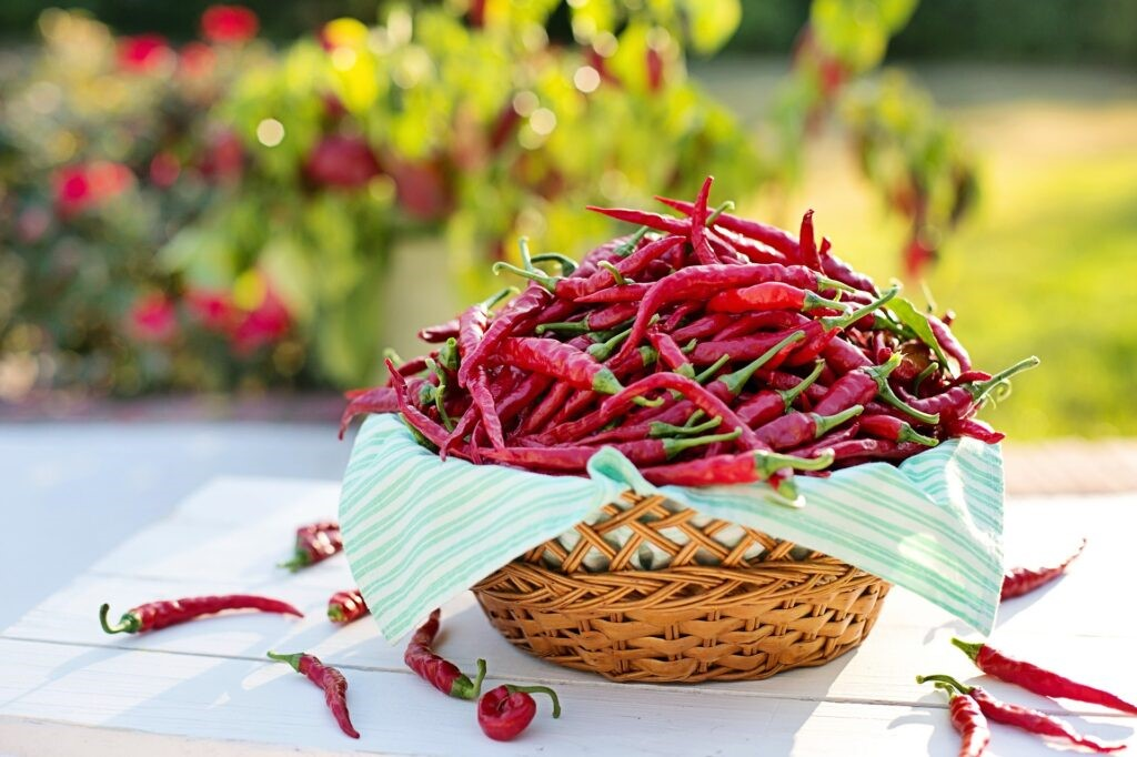 A basket on a wooden table overflowing with red chillies.